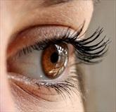 Tremore delle palpebre: Miochimia